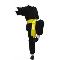 Kimono kung fu tradition